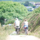 Bike Hire in Bude :xtra number for contact 07976836206